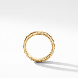 Armory Band Ring in 18K Yellow Gold alternative image
