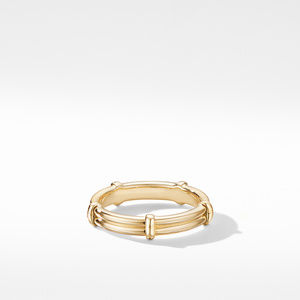 DY Classic Astor Two Row Band Ring in 18K Yelow Gold