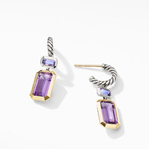 Novella Drop Earrings with Amethyst and 18K Yellow Gold alternative image