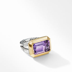 Novella Statement Ring with Amethyst and 18K Yellow Gold