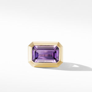 Novella Statement Ring with Amethyst and 18K Yellow Gold alternative image