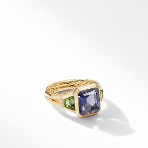 Novella Three Stone Ring in 18K Yellow Gold with Iolite and Green Tourmaline