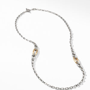 Wellesley Link Long Necklace with 18K Gold alternative image