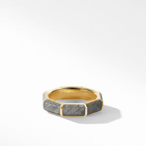 Faceted Band Ring in 18K Yellow Gold with Meteorite