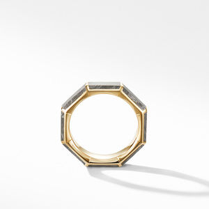 Faceted Band Ring in 18K Yellow Gold with Meteorite alternative image