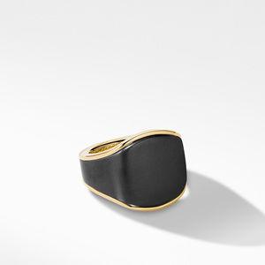 Streamline® Signet Ring in 18K Yellow Gold with Black Titanium